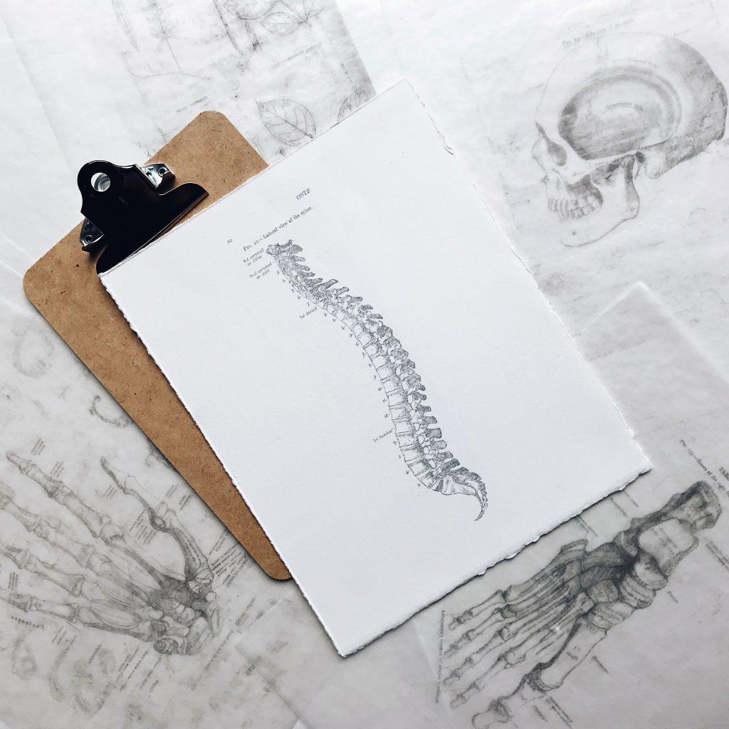 www.mindfulyogatherapie.nl/lage-rugklachten
